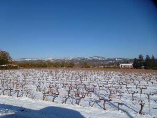 vignes sous la neige, la celle
